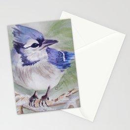BEAUTIFUL BLUE BIRD Stationery Cards