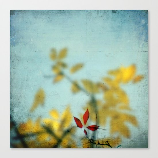 When Red meets Yellow Canvas Print