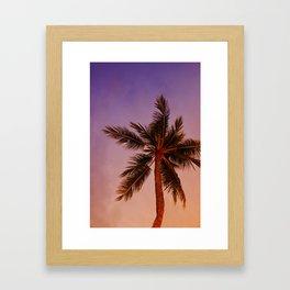 Palm Tree at Sunset Framed Art Print