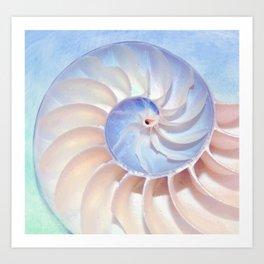 Nautilus Shell Spirals Art Print