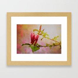 Spring flare Framed Art Print