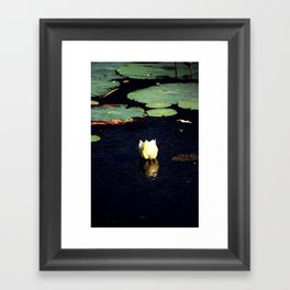 Lone lotus Framed Art Print