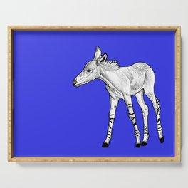 Somali Wild Ass foal - blue Serving Tray