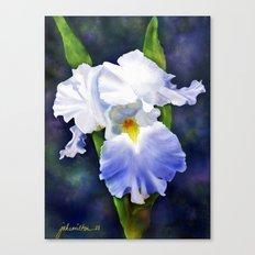 Susan's Blue Iris Canvas Print
