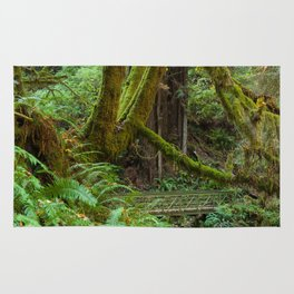 Autumn Greens Rug