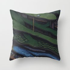 The Great Divide Throw Pillow