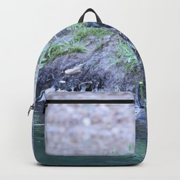Black Bird At Water's Edge Backpack