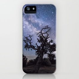 Astronomer's Tree iPhone Case