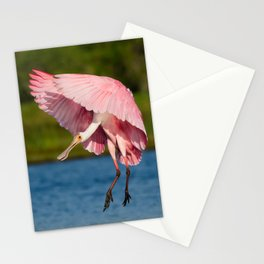 Spoonbill in Flight Stationery Cards
