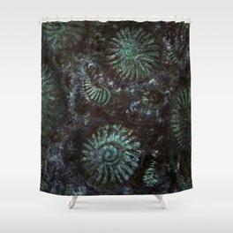 Ammonites and Trilobites Shower Curtain