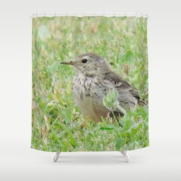 Pipit on the Lawn Shower Curtain