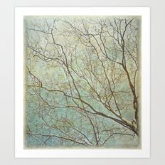 All Branches Art Print