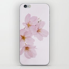 Beautiful spring cherry blossoms at Yoyogi Park in Tokyo iPhone Skin