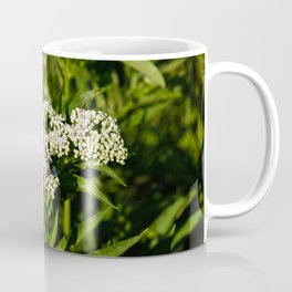 HU Coffee Mug