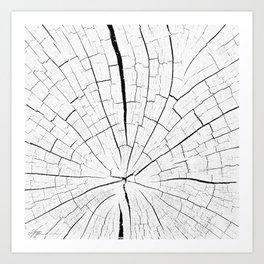 Woody white Art Print