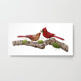 Northern  Cardinals Metal Print