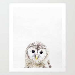 Owl, Baby, Animal, ZOO, Nursery, Minimal, Modern, Wall art Art Print Art Print