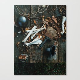 What You're Asking For Canvas Print