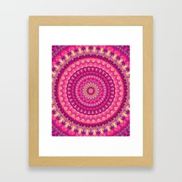 Mandala 303 Framed Art Print