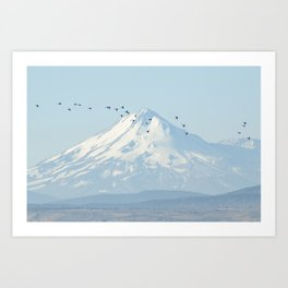 """Shasta"" by Murray Bolesta! Art Print"