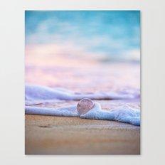 Beach Ball - Hawaiian Sunset Beach Canvas Print