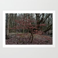 Spring is coming... Art Print