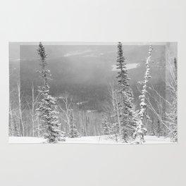 Winter 9 Rug