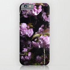 Goodnight Sakura  Slim Case iPhone 6s