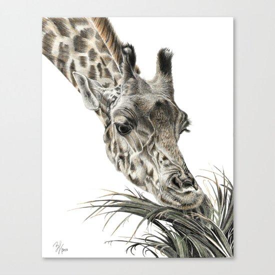 Giraffe - A Long Munch Canvas Print