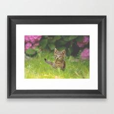 Little Tiger in Gras Framed Art Print