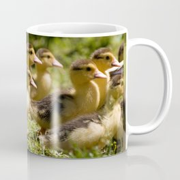 Yellow Muscovy duck ducklings running Coffee Mug