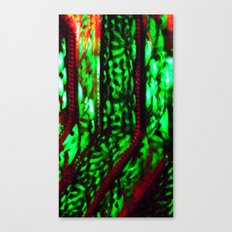 Envy Canvas Print
