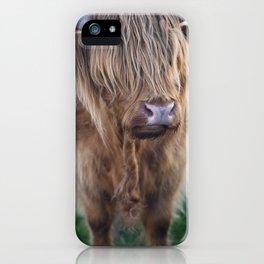 Highland Cow IV iPhone Case