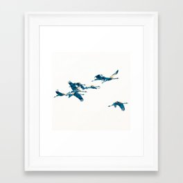 Beautiful Cranes in white background Framed Art Print