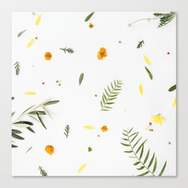 Foraged Florals Canvas Print