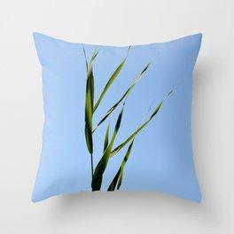 reed closeup Throw Pillow