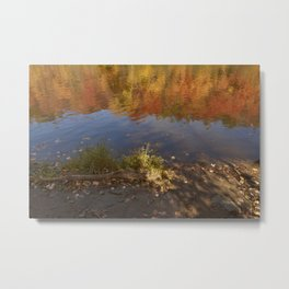 Colours in Mauricie - Canada Metal Print