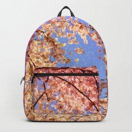 Cherry Blossom Sky Backpack