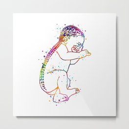 Baby Art Gift Colorful Watercolor Spine Art Brain Art Anatomy Gift Pregnancy Gift Newborn Baby Art Metal Print