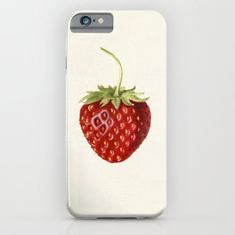 Strawberry (Fragaria) (1930) by Louis Charles Christopher Krieger iPhone Case