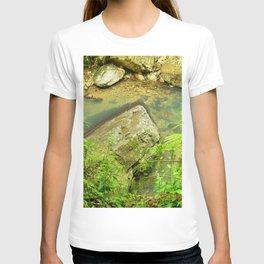 Paradise Pond in La Mina Trail - next to La Mina river in El Yunque PR T-shirt