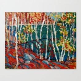 In the Northland / Dennis Weber / ShreddyStudio Canvas Print