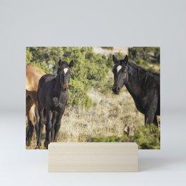 Family Resemblance - Orlando and Norma Jean - Pryor Mustangs Mini Art Print