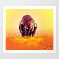 Sun Hog Art Print