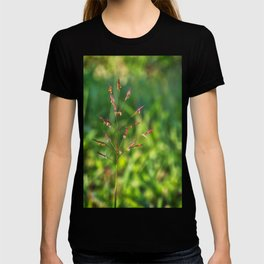 Wild grass T-shirt