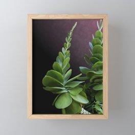 Succulent Spear Framed Mini Art Print