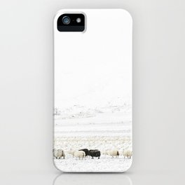Icelandic Sheep VI iPhone Case
