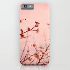 Expectation Slim Case iPhone 6s