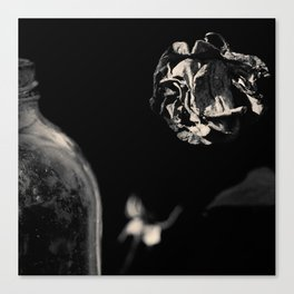 Dead Flowers and Glass #1 Canvas Print