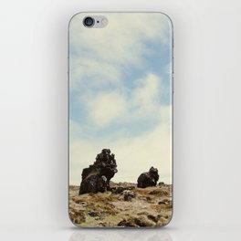 Desolate Iceland iPhone Skin